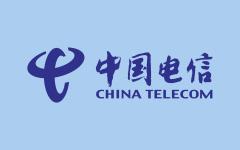<span>China Telecom</span>